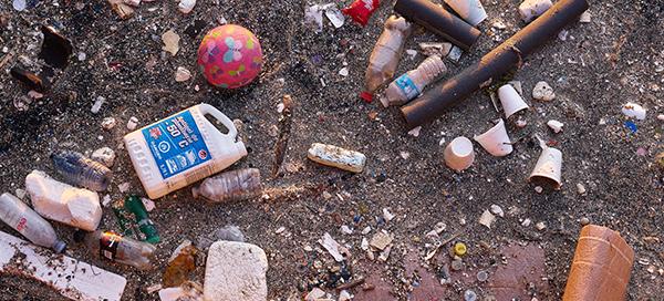plastic pollution Toronto waterfront