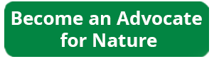 advocate for nature
