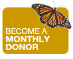Monthly donor button